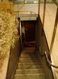 kokage20061129-001.JPG
